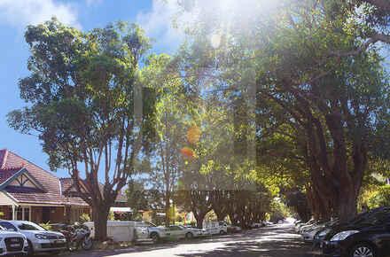 Annandale-Street.jpg