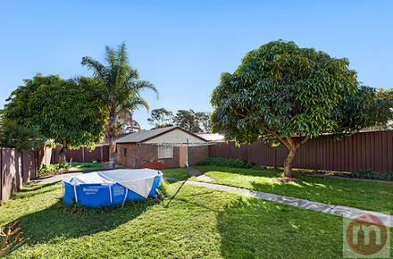 Great-North-Road-297-Fivedock-Backyard-Low.jpg